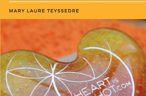 Couverture l'amour sur le toit du monde, Mary Laure Teyssedre